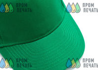 Зленые бейсболки с логотипом «День эколога»