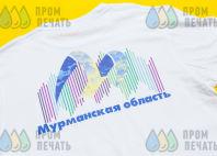 Белые футболки с логотипом в виде разноцветных линий