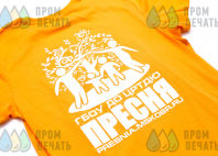 Оранжевые футболки с изображением «ПРЕСНЯ»