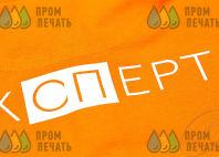 Футболки-поло с логотипом «ЭКСПЕРТ»